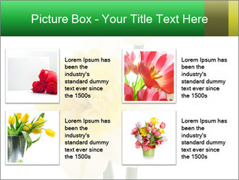 0000079661 PowerPoint Template - Slide 14