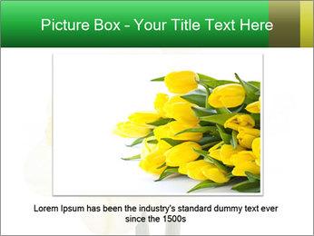 0000079661 PowerPoint Template - Slide 15