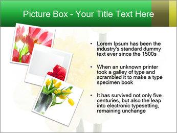 0000079661 PowerPoint Template - Slide 17