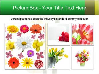 0000079661 PowerPoint Template - Slide 19