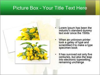 0000079661 PowerPoint Template - Slide 20