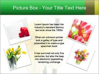 0000079661 PowerPoint Template - Slide 24