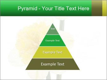 0000079661 PowerPoint Template - Slide 30