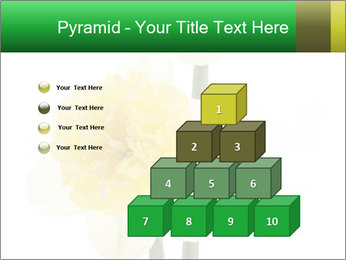 0000079661 PowerPoint Template - Slide 31