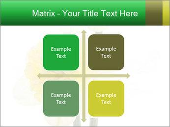 0000079661 PowerPoint Template - Slide 37