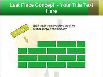 0000079661 PowerPoint Template - Slide 46