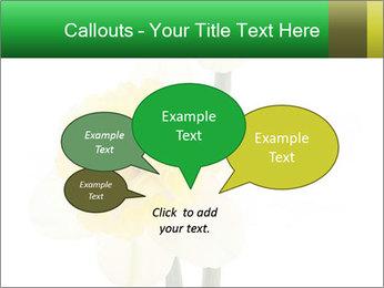 0000079661 PowerPoint Template - Slide 73