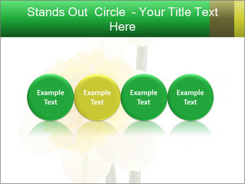 0000079661 PowerPoint Template - Slide 76