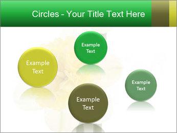 0000079661 PowerPoint Template - Slide 77