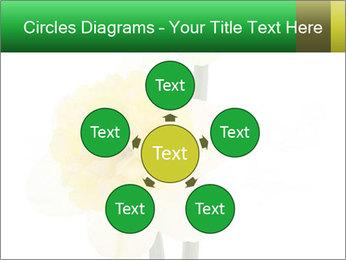 0000079661 PowerPoint Template - Slide 78