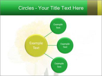 0000079661 PowerPoint Template - Slide 79