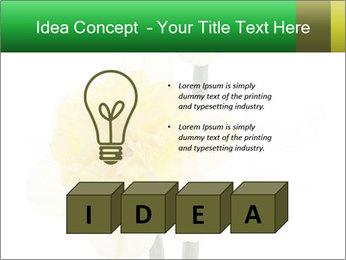 0000079661 PowerPoint Template - Slide 80