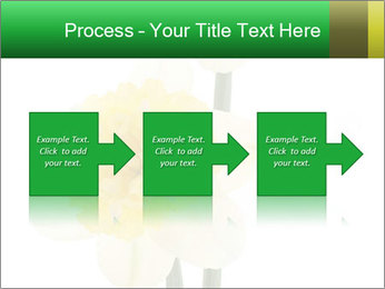 0000079661 PowerPoint Template - Slide 88
