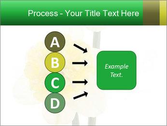 0000079661 PowerPoint Template - Slide 94