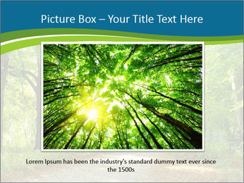 0000079668 PowerPoint Template - Slide 16