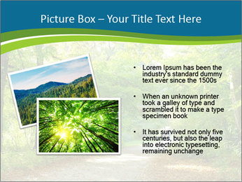 0000079668 PowerPoint Template - Slide 20