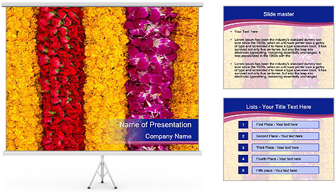 0000079675 PowerPoint Template