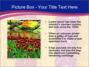 0000079675 PowerPoint Template - Slide 13