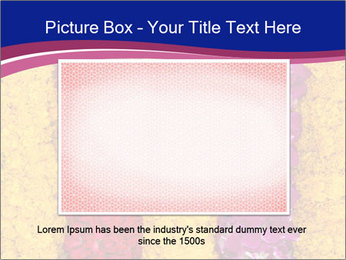 0000079675 PowerPoint Template - Slide 16