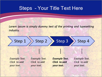 0000079675 PowerPoint Template - Slide 4