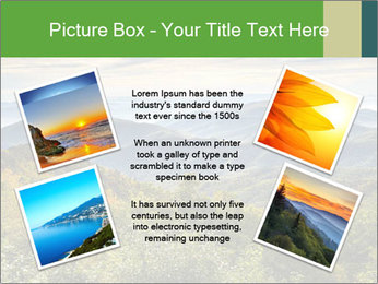 0000079680 PowerPoint Templates - Slide 24