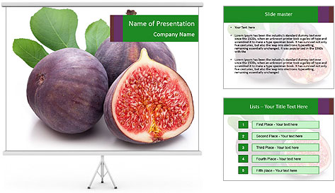 0000079686 PowerPoint Template