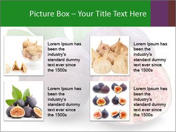 0000079686 PowerPoint Template - Slide 14