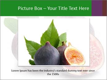 0000079686 PowerPoint Template - Slide 16