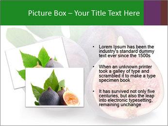 0000079686 PowerPoint Template - Slide 20