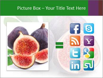 0000079686 PowerPoint Template - Slide 21