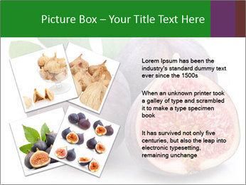 0000079686 PowerPoint Template - Slide 23