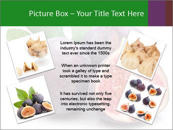 0000079686 PowerPoint Template - Slide 24