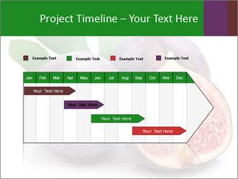 0000079686 PowerPoint Template - Slide 25