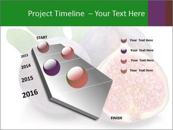 0000079686 PowerPoint Template - Slide 26