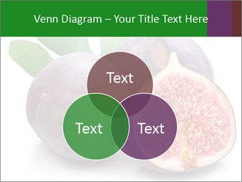 0000079686 PowerPoint Template - Slide 33