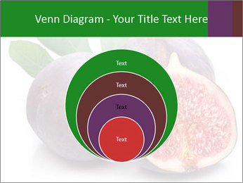 0000079686 PowerPoint Template - Slide 34