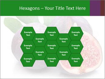 0000079686 PowerPoint Template - Slide 44