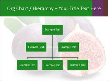 0000079686 PowerPoint Template - Slide 66