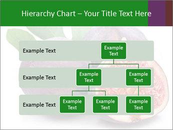 0000079686 PowerPoint Template - Slide 67