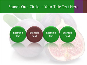 0000079686 PowerPoint Template - Slide 76