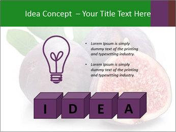0000079686 PowerPoint Template - Slide 80