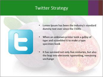 0000079686 PowerPoint Template - Slide 9