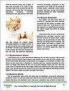 0000079686 Word Template - Page 4