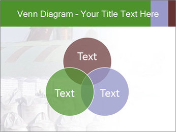 0000079688 PowerPoint Templates - Slide 33