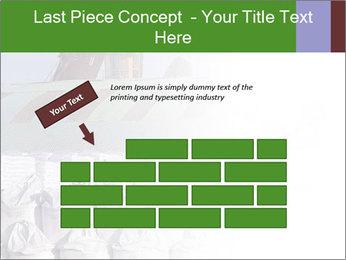 0000079688 PowerPoint Templates - Slide 46