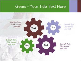 0000079688 PowerPoint Templates - Slide 47