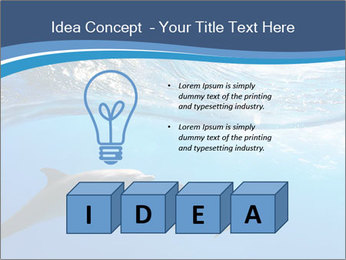 0000079689 PowerPoint Template - Slide 80
