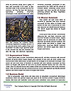 0000079696 Word Template - Page 4
