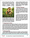0000079697 Word Template - Page 4