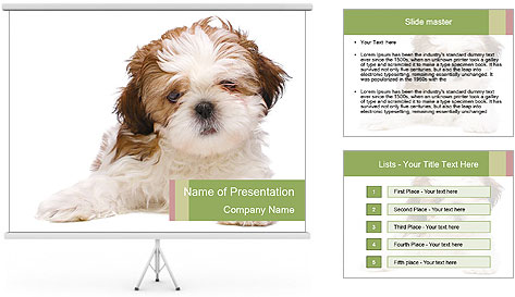0000079702 PowerPoint Template